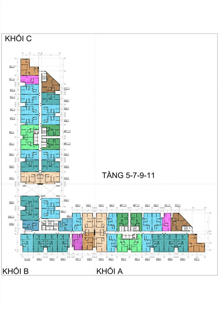 TANG-5-7-9-11